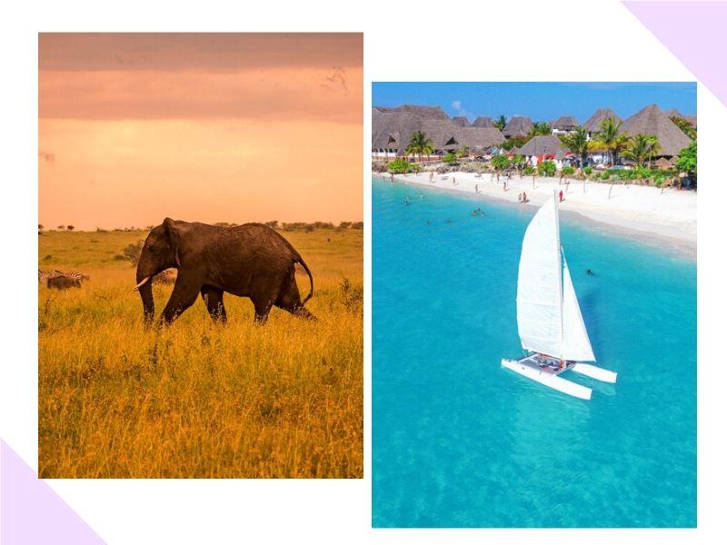Vamos passar a lua de mel na Tanzânia com Zanzibar?