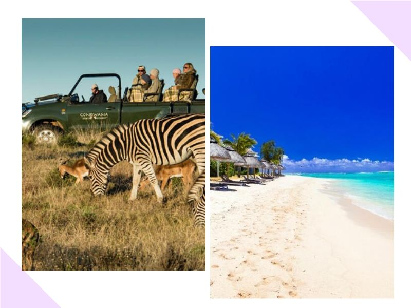 Vamos passar a lua de mel nas Ilhas Maurício?